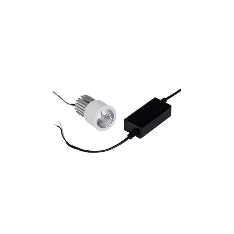 LED 220V 1x10W Blanco puro